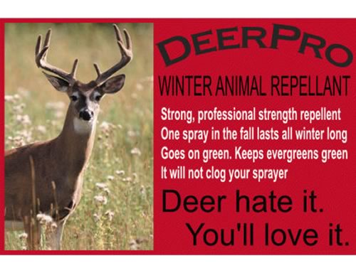 DeerPro Winter