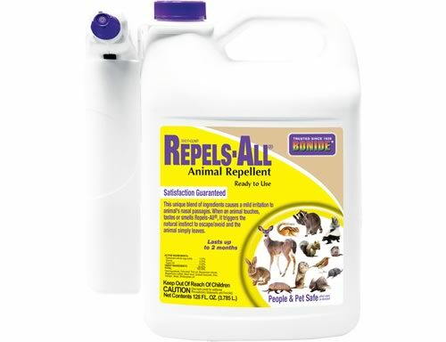 Repels All Ready to use gallon with spray