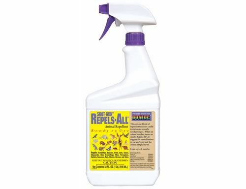 Repels All Ready to use Quarter with spray